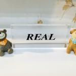 REALのイメージ