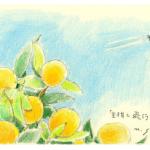齋正機先生の作品の画像